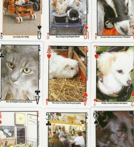 Pets On Parade Pumpkin Show Playing Cards